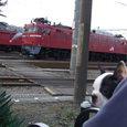 電車だぁ~